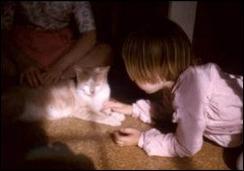 Lori Faye Bock's first cat, Butterscotch