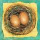 New Beginnings (5) - Nests Series